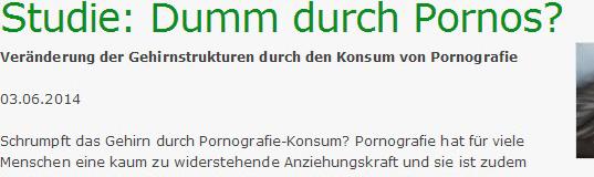 dumme_pornografie